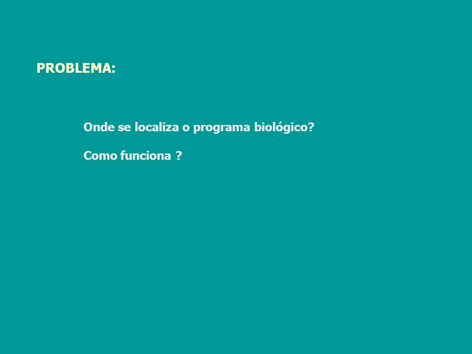 PROBLEMA: Onde se localiza o programa biológico? Como funciona ?