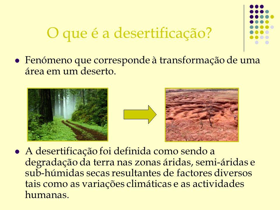 O que é a desertificação? Fenómeno que corresponde à transformação de uma área em um deserto. A desertificação foi definida como sendo a degradação da