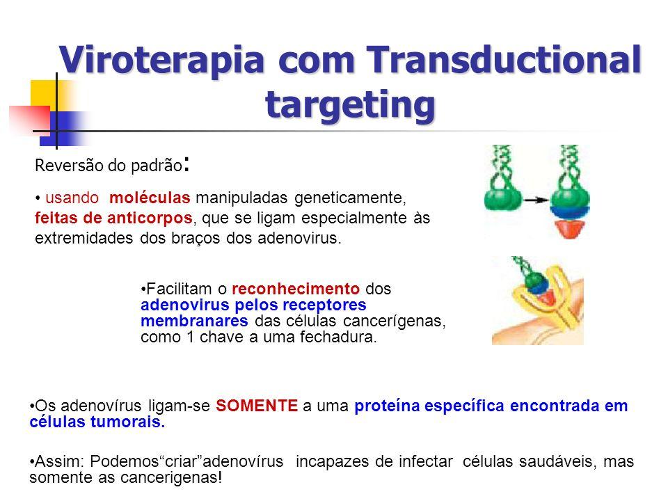 Viroterapia com Transductional targeting Reversão do padrão : usando moléculas manipuladas geneticamente, feitas de anticorpos, que se ligam especialm