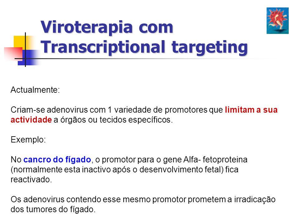 Viroterapia com Transcriptional targeting Actualmente: Criam-se adenovirus com 1 variedade de promotores que limitam a sua actividade a órgãos ou teci