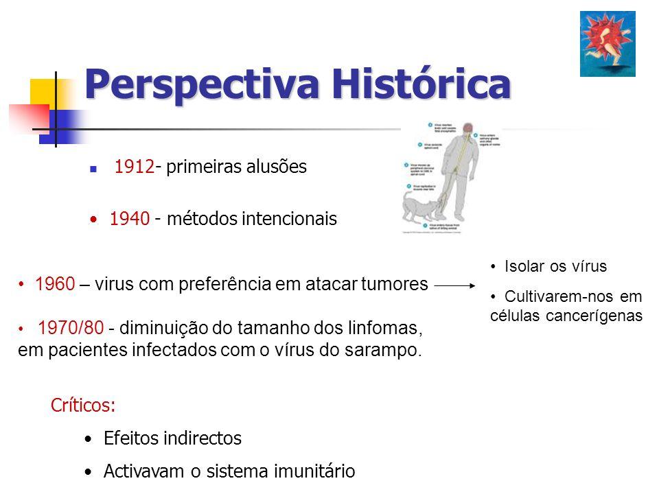Perspectiva Histórica 1912- primeiras alusões 1960 – virus com preferência em atacar tumores Isolar os vírus Cultivarem-nos em células cancerígenas 19