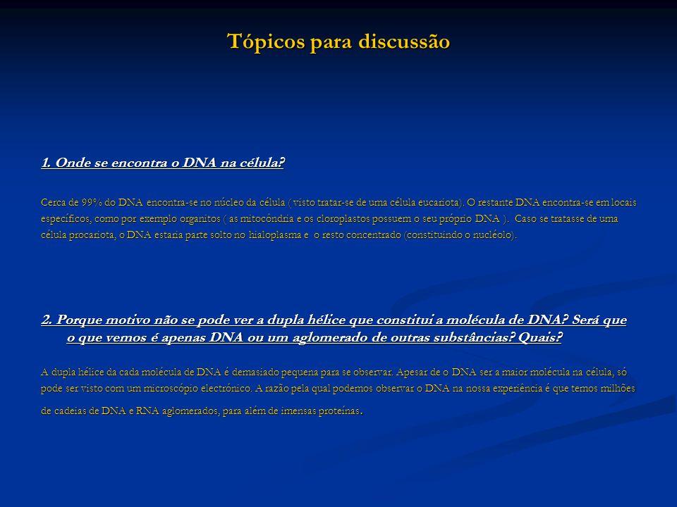 1. Onde se encontra o DNA na célula? Cerca de 99% do DNA encontra-se no núcleo da célula ( visto tratar-se de uma célula eucariota). O restante DNA en