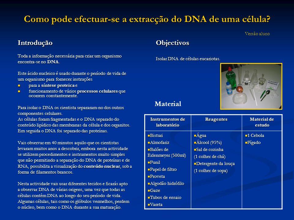Como pode efectuar-se a extracção do DNA de uma célula? Introdução Toda a informação necessária para criar um organismo encontra-se no DNA. Este ácido
