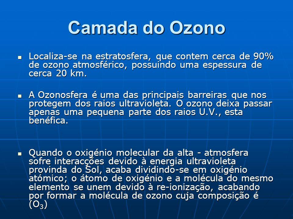 O buraco na camada de ozono O buraco na camada de ozono é um fenómeno que ocorre somente durante uma determinada época do ano, entre Agosto e início de Novembro (primavera no hemisfério sul).