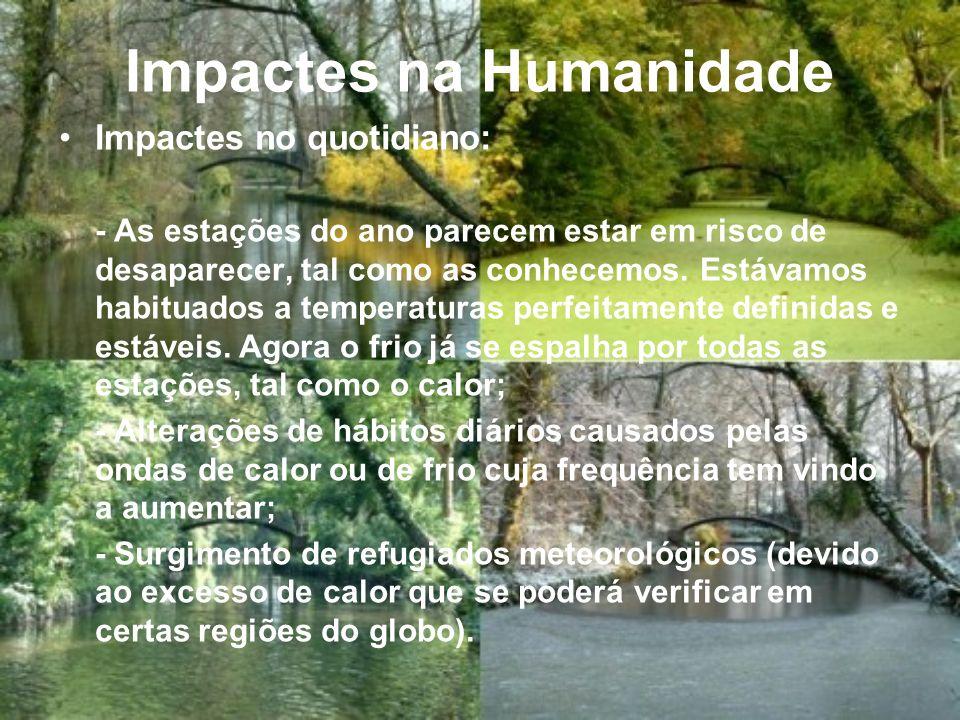 Impactes na Humanidade Impactes no quotidiano: - As estações do ano parecem estar em risco de desaparecer, tal como as conhecemos.