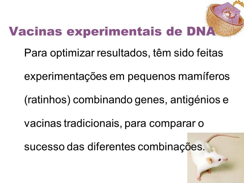 Vacinas experimentais de DNA Para optimizar resultados, têm sido feitas experimentações em pequenos mamíferos (ratinhos) combinando genes, antigénios