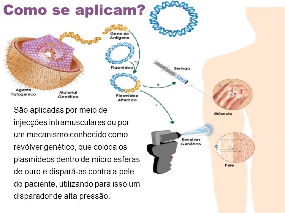 São aplicadas por meio de injecções intramusculares ou por um mecanismo conhecido como revólver genético, que coloca os plasmídeos dentro de micro esf