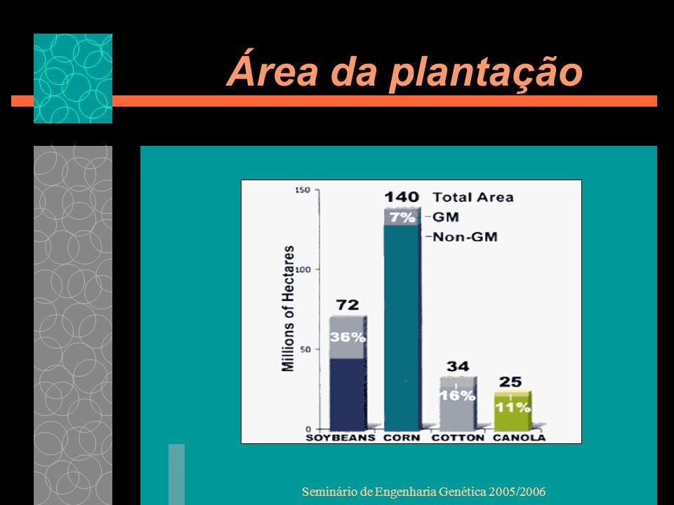 Seminário de Engenharia Genética 2005/2006 Área da plantação