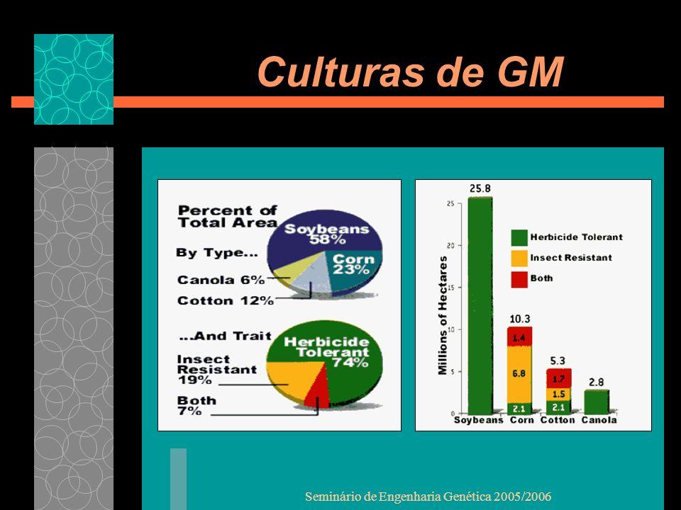 Seminário de Engenharia Genética 2005/2006 Culturas de GM