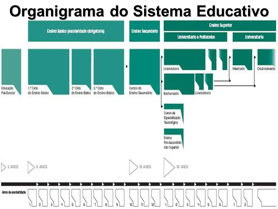 Organigrama do Sistema Educativo