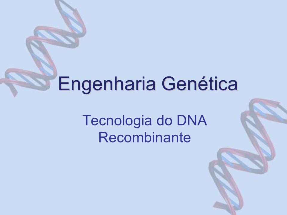 Engenharia Genética Tecnologia do DNA Recombinante