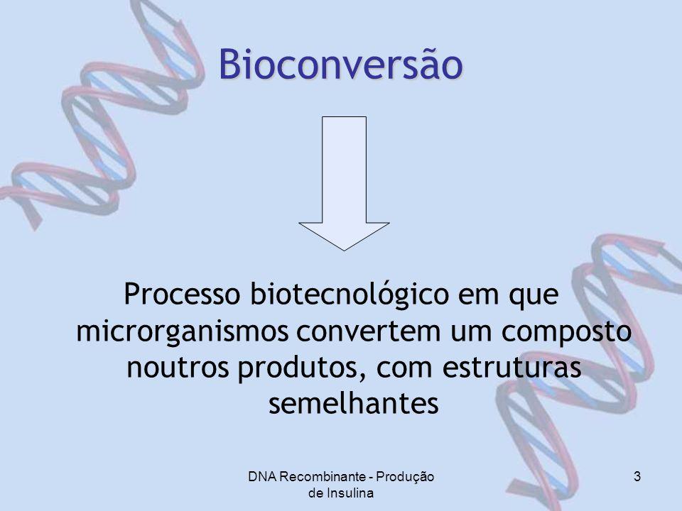 DNA Recombinante - Produção de Insulina 3 Bioconversão Processo biotecnológico em que microrganismos convertem um composto noutros produtos, com estruturas semelhantes