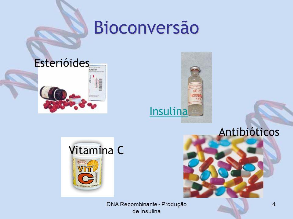 DNA Recombinante - Produção de Insulina 4 Bioconversão Antibióticos Esterióides Vitamina C Insulina
