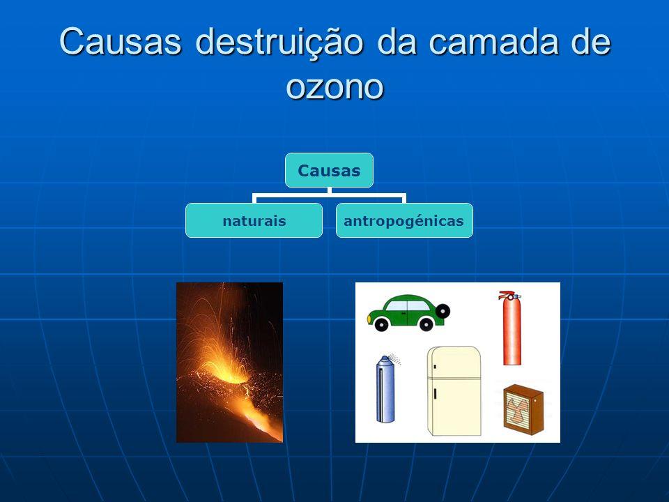 Causas destruição da camada de ozono Causas naturaisantropogénicas