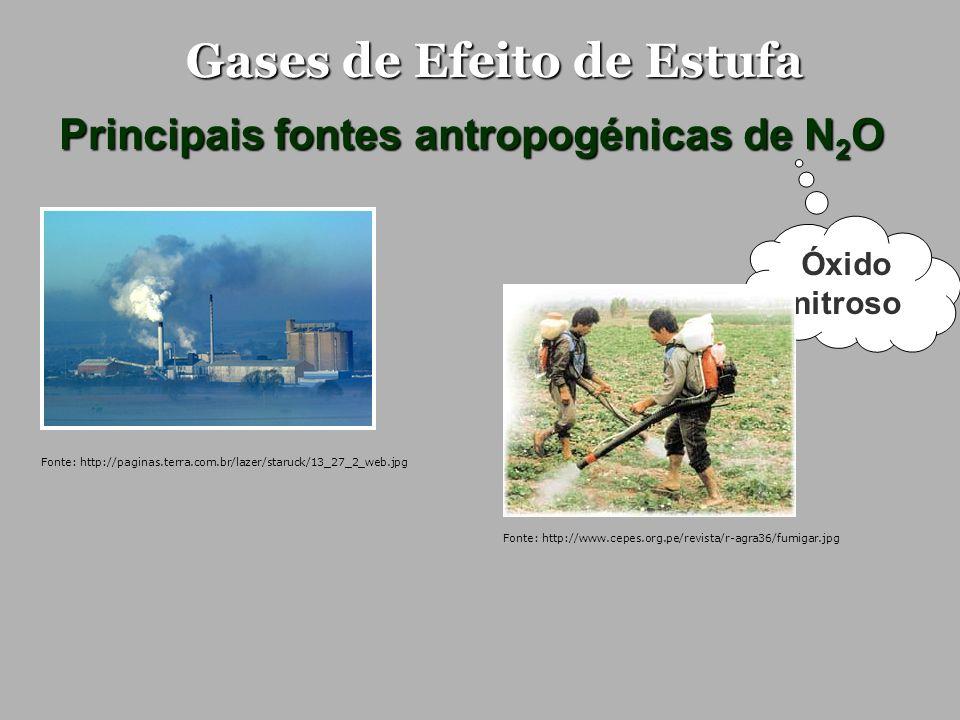Gases de Efeito de Estufa Principais fontes antropogénicas de N 2 O Óxido nitroso Fonte: http://paginas.terra.com.br/lazer/staruck/13_27_2_web.jpg Fon