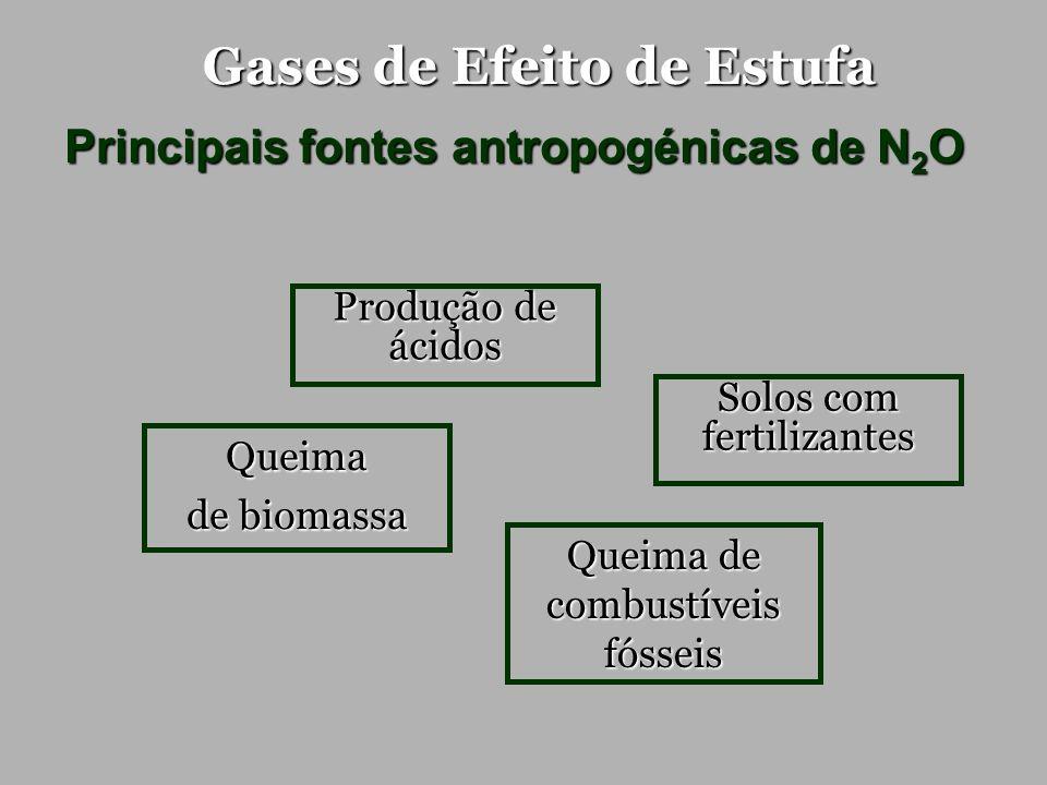 Gases de Efeito de Estufa Principais fontes antropogénicas de N 2 O Solos com fertilizantes Produção de ácidos Queima de biomassa Queima de combustíve
