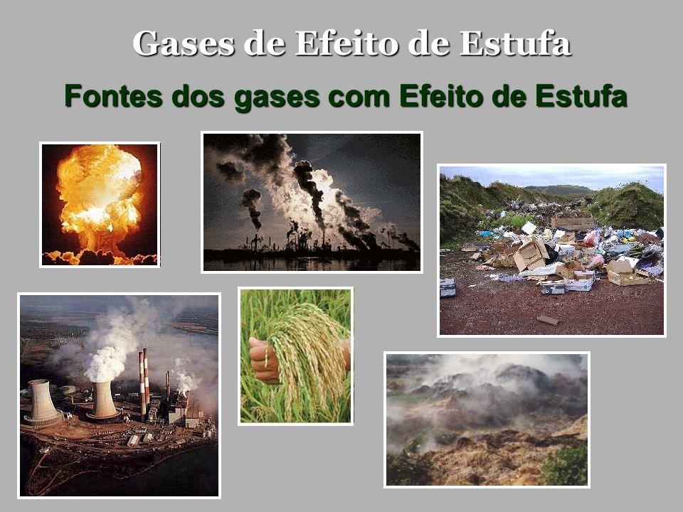 Gases de Efeito de Estufa Fontes dos gases com Efeito de Estufa