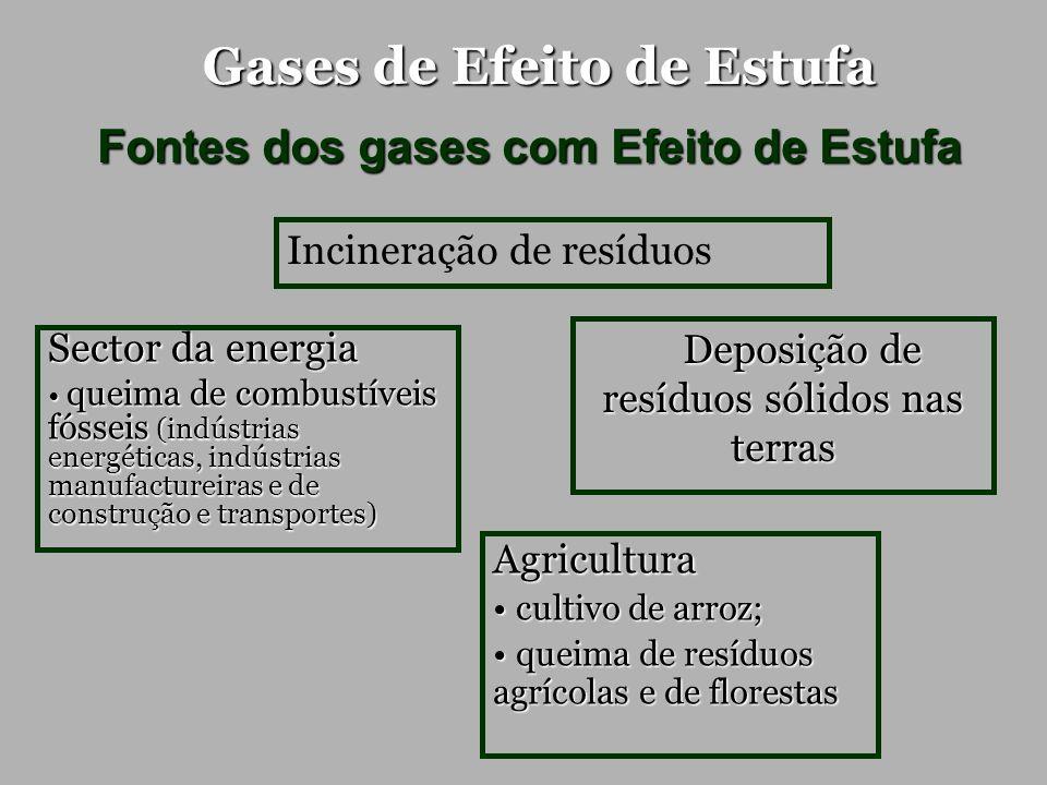 Gases de Efeito de Estufa Fontes dos gases com Efeito de Estufa Agricultura cultivo de arroz; cultivo de arroz; queima de resíduos agrícolas e de flor