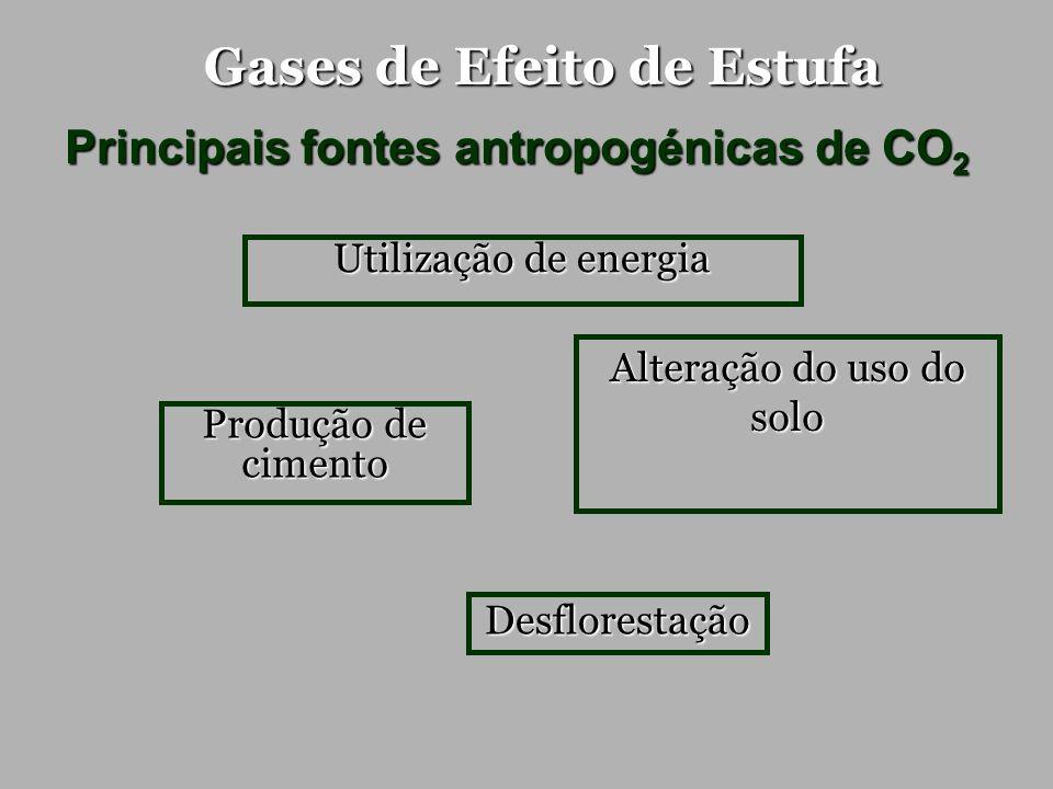 Gases de Efeito de Estufa Principais fontes antropogénicas de CH 4 Metano Fonte: http://www.flar.org /images/espigaweb.