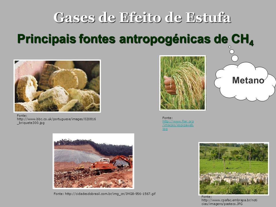 Gases de Efeito de Estufa Principais fontes antropogénicas de CH 4 Produção e utilização de energia Pecuária Agricultura (arrozais) Aterros Queima de biomassa Esgotos domésticos