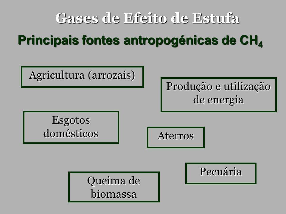 Gases de Efeito de Estufa Principais fontes antropogénicas de CH 4 Produção e utilização de energia Pecuária Agricultura (arrozais) Aterros Queima de