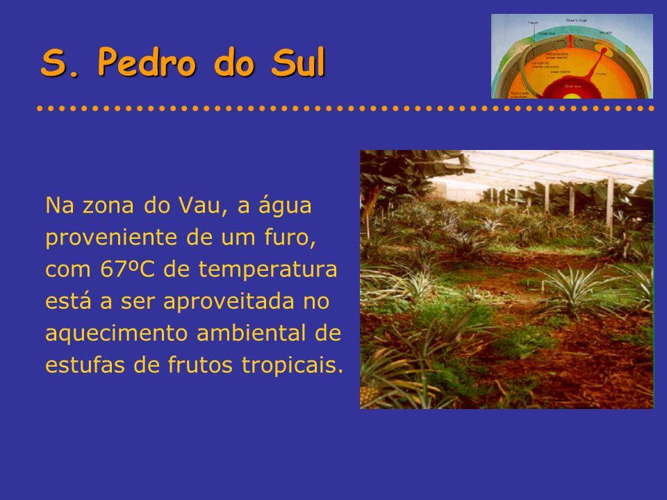 Na zona do Vau, a água proveniente de um furo, com 67ºC de temperatura está a ser aproveitada no aquecimento ambiental de estufas de frutos tropicais.
