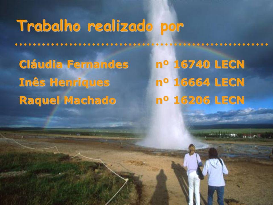 Trabalho realizado por Cláudia Fernandes nº 16740 LECN Inês Henriques nº 16664 LECN Raquel Machado nº 16206 LECN