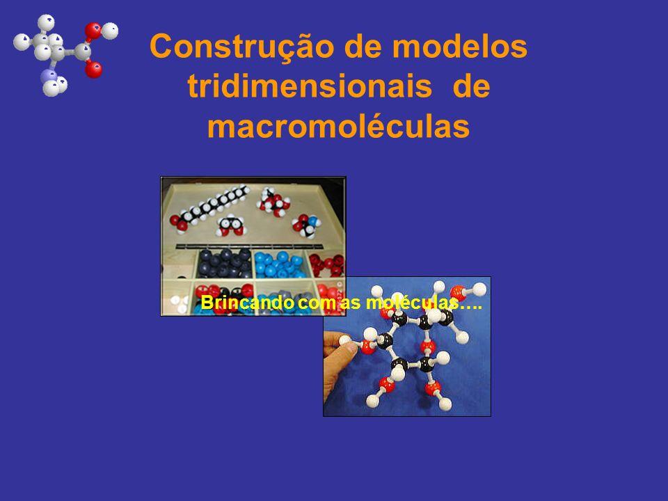 Construção de modelos tridimensionais de macromoléculas Brincando com as moléculas….