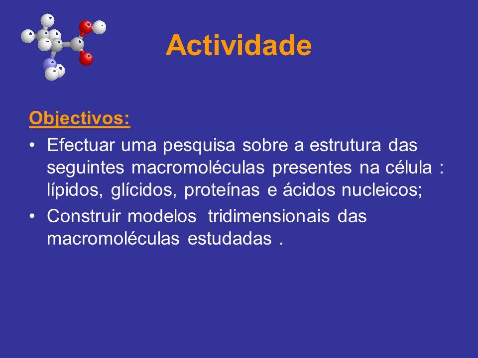 Actividade Tarefa: Depois de estudares as Macromoléculas presentes na célula, efectua uma pesquisa acerca das estruturas moleculares das mesmas e constrói essas estruturas através de modelos moleculares tridimensionais.