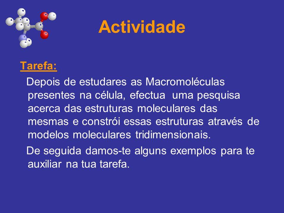 Actividade Tarefa: Depois de estudares as Macromoléculas presentes na célula, efectua uma pesquisa acerca das estruturas moleculares das mesmas e cons