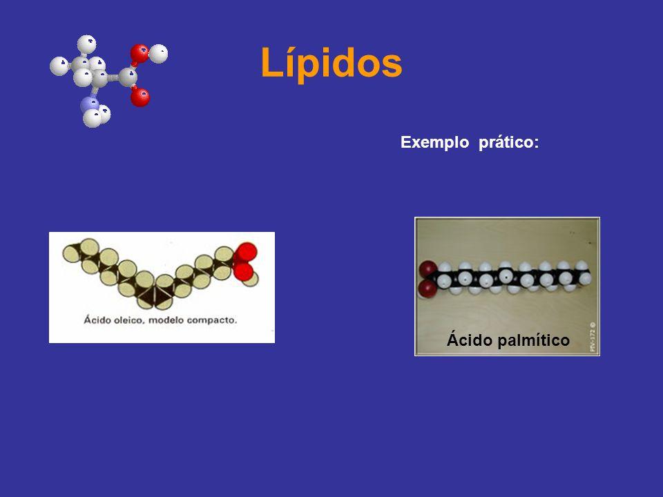 Lípidos Exemplo prático: Ácido palmítico