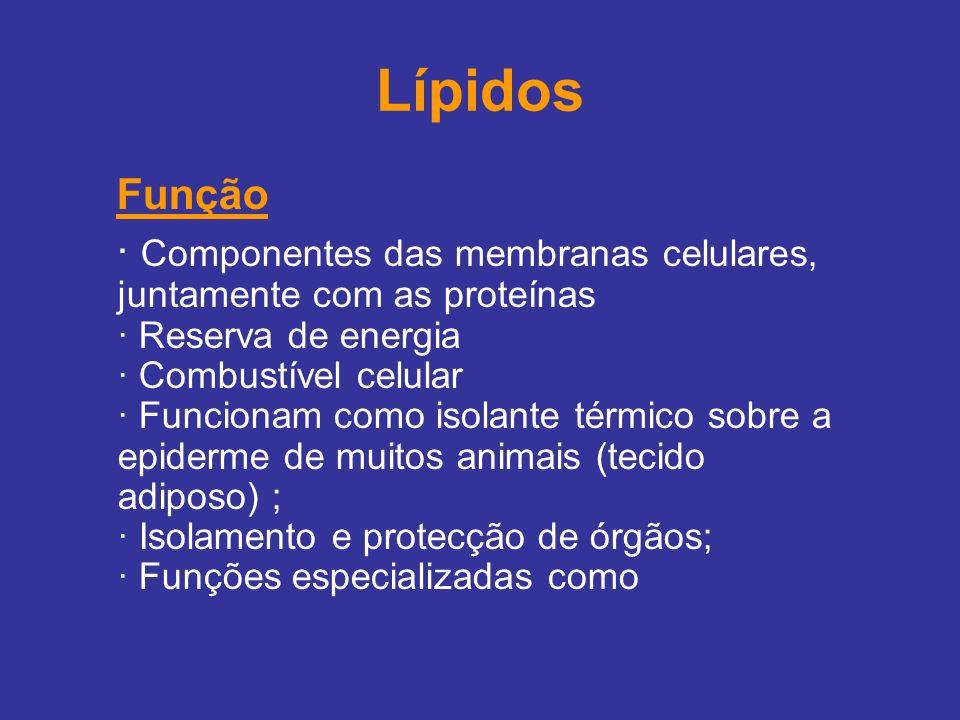 Lípidos Função · Componentes das membranas celulares, juntamente com as proteínas · Reserva de energia · Combustível celular · Funcionam como isolante