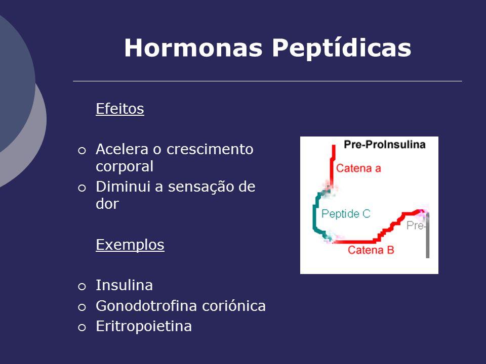 Hormonas Peptídicas Efeitos Acelera o crescimento corporal Diminui a sensação de dor Exemplos Insulina Gonodotrofina coriónica Eritropoietina