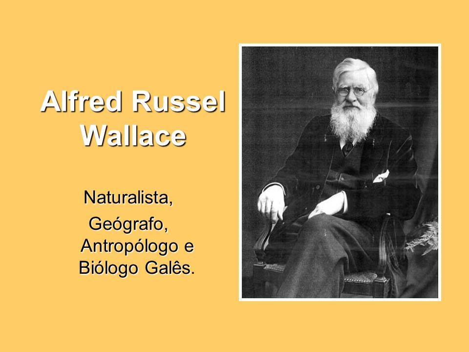 Alfred Russel Wallace Naturalista, Geógrafo, Antropólogo e Biólogo Galês Geógrafo, Antropólogo e Biólogo Galês.