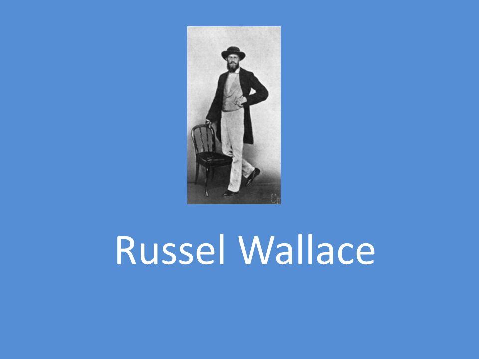 Biografia de Russel Wallace: Nasceu no País de Gales a 8 de Janeiro de 1823.
