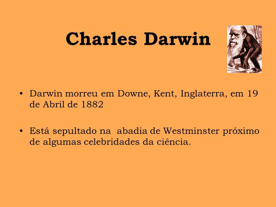 Charles Darwin Darwin morreu em Downe, Kent, Inglaterra, em 19 de Abril de 1882 Está sepultado na abadia de Westminster próximo de algumas celebridade