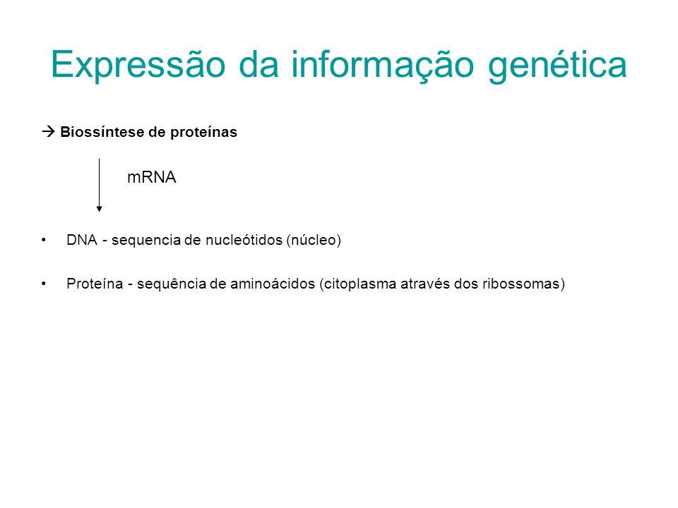 Expressão da informação genética Biossíntese de proteínas DNA - sequencia de nucleótidos (núcleo) Proteína - sequência de aminoácidos (citoplasma atra
