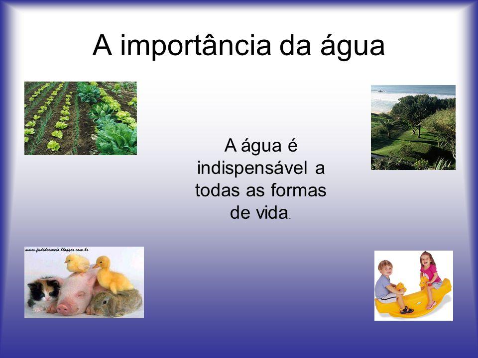 A importância da água A água é indispensável a todas as formas de vida.