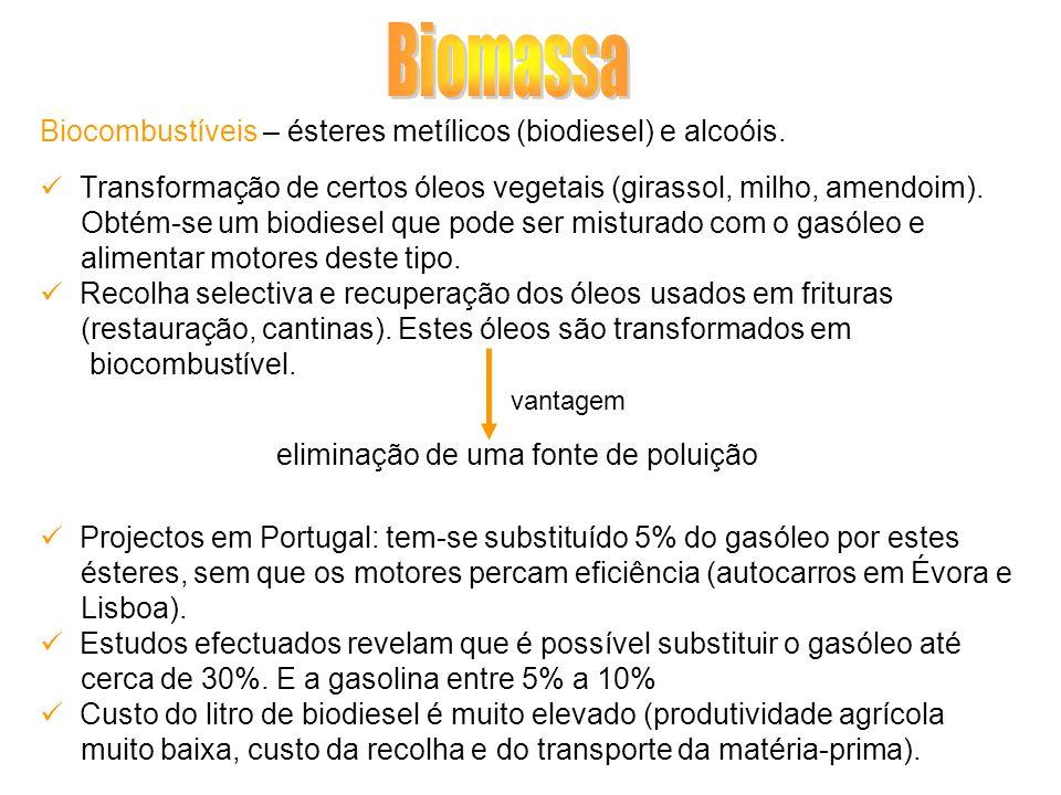 Biocombustíveis – ésteres metílicos (biodiesel) e alcoóis. Transformação de certos óleos vegetais (girassol, milho, amendoim). Obtém-se um biodiesel q