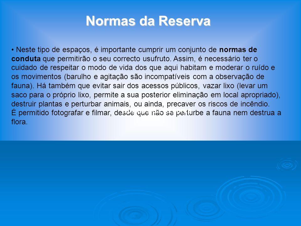 Legislação Protecção legal Nacional : Reserva Natural do Estuário do Sado (Decreto-lei nº 430/80 de 1 de Outubro; 23.971 ha que incluem 20.011 ha da I