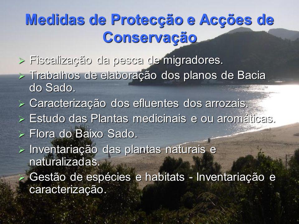 Medidas de Protecção e Acções de Conservação Medidas de Protecção e Acções de Conservação Na Reserva Natural do Estuário do Sado existem diversas acçõ