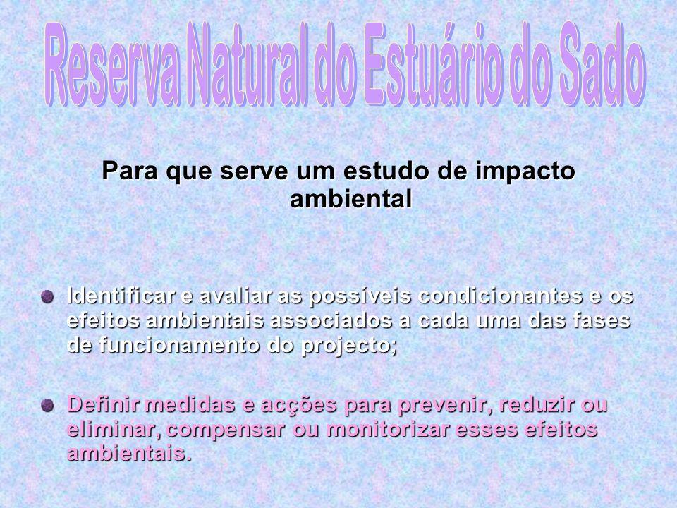 Autor: Vera Vieira Gomes, nº16019 Licenciatura no Ensino das Ciências da Natureza Impactes Geoambientais