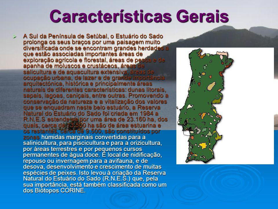 Características Gerais Localização Localização Geologia/geomorfologia Geologia/geomorfologia Tectónica Tectónica Sismicidade Sismicidade Hidrologia Hi