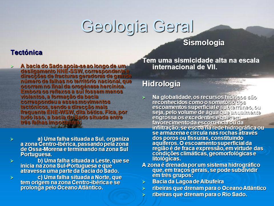 Geologia Geral Geologia Geral Os principais grupos litológicos da bacia são as rochas detríticas, rochas carbonatadas, rochas magmáticas e rochas filo