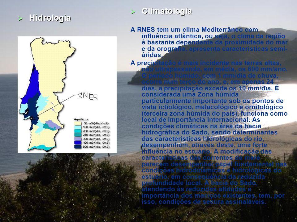 Geologia Geral Tectónica A bacia do Sado apoia-se ao longo de um desligamento NNE-SSW, correspondente a direcções de fracturas geradoras de grande núm