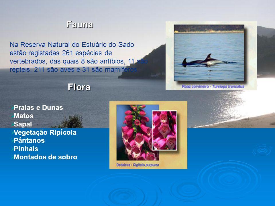 Hidrologia Hidrologia Climatologia Climatologia A RNES tem um clima Mediterrâneo com influência atlântica, ou seja, o clima da região é bastante depen