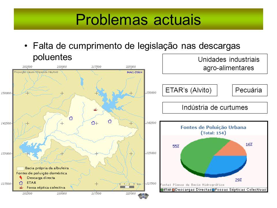 Problemas actuais Falta de cumprimento de legislação nas descargas poluentes Indústria de curtumes PecuáriaETARs (Alvito) Unidades industriais agro-al