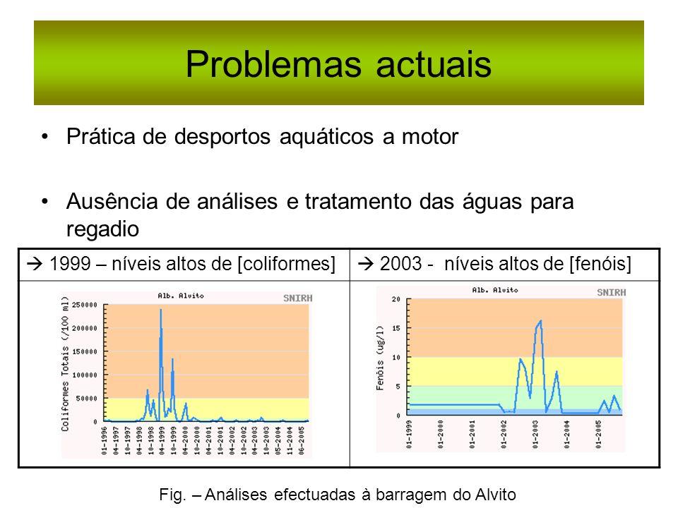 Problemas actuais Prática de desportos aquáticos a motor Ausência de análises e tratamento das águas para regadio 1999 – níveis altos de [coliformes]