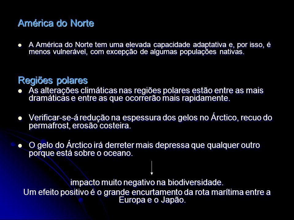 América do Norte A América do Norte tem uma elevada capacidade adaptativa e, por isso, é menos vulnerável, com excepção de algumas populações nativas.