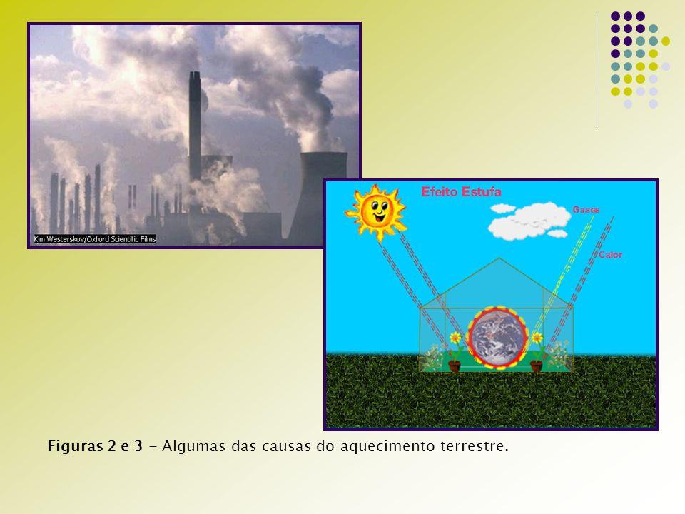 Figuras 2 e 3 - Algumas das causas do aquecimento terrestre.